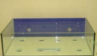 """35 gallon Rimless """"Coral Frag"""" aquarium"""