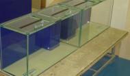 Two 90 gallon Precision style aquariums