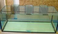 535 gallon Precision aquarium