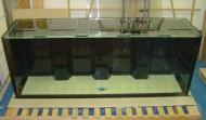 750 gallon Precision style aquarium