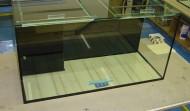 155 gallon Precision aquarium