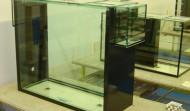 325 gallon Precision aquarium