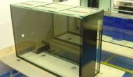 360 gallon Precision aquarium