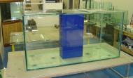 350 gallon Precision style aquarium
