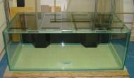 700 gallon Precision style aquarium